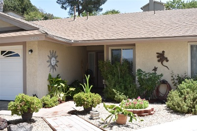 Temecula Single Family Home For Sale: 30165 Casa Chata Pl