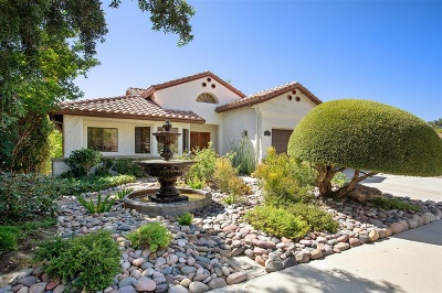 Escondido Single Family Home For Sale: 1041 Inspiration Lane