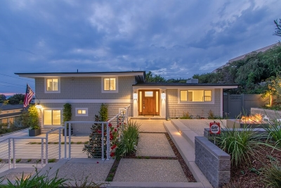 Del Mar Single Family Home For Sale: 412 10th Street