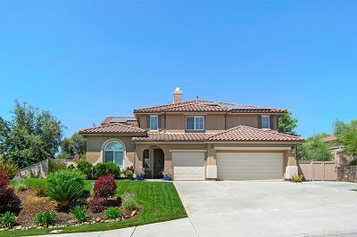 San Marcos Single Family Home For Sale: 806 Settlers Ct