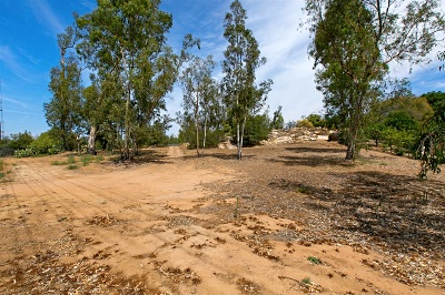 Poway Residential Lots & Land For Sale: 16620 Sagewood Lane