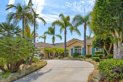Oceanside Single Family Home For Sale: 5851 Ranch View Rd