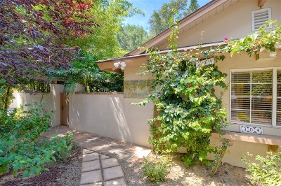 Encinitas Single Family Home For Sale: 304 Alviso Way
