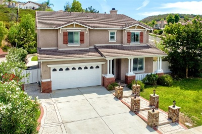 San Marcos Single Family Home For Sale: 703 Via De Plata