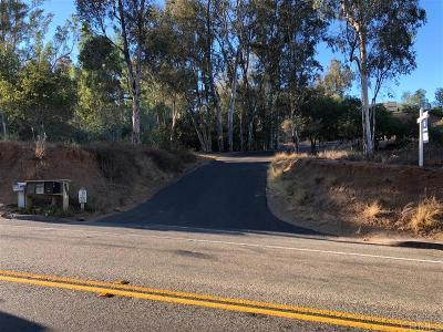 Escondido Single Family Home For Sale: 950 W Via Rancho Pkwy