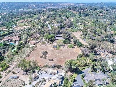 Rancho Santa Fe Single Family Home For Sale: 16711 Los Morros
