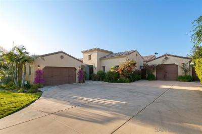 Escondido Single Family Home For Sale: 9517 Welk View Court