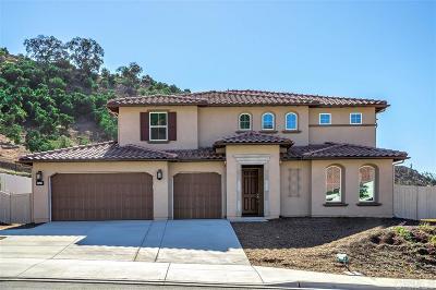 Escondido Single Family Home For Sale: 1349 Vista Ave