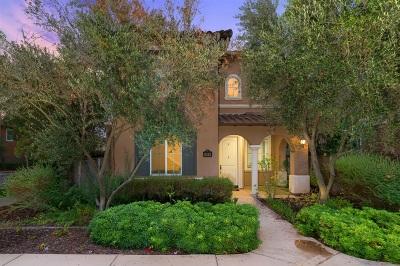 Del Sur, Del Sur Community, Del Sur/Santa Fe Hills Single Family Home For Sale: 8345 Katherine Claire Lane