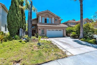 Oceanside Single Family Home For Sale: 3792 Via Las Villas