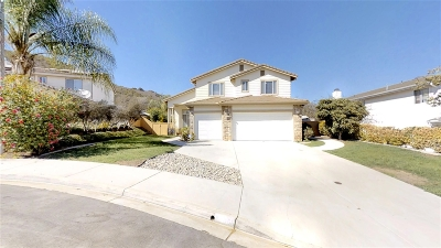 San Marcos Single Family Home For Sale: 808 Legacy Dr