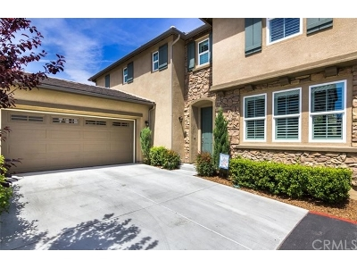 Temecula Single Family Home For Sale: 27478 Blackstone Road