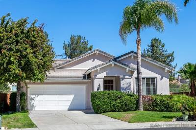 Temecula Single Family Home For Sale: 42031 Southern Hills Dr