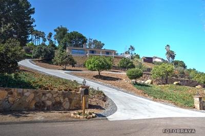 San Marcos Single Family Home For Sale: 1661 Via Allondra