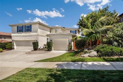 Oceanside Single Family Home For Sale: 5304 Village Dr