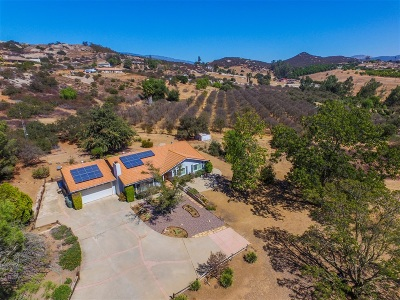 Single Family Home For Sale: 31012 Saddleback Rd.