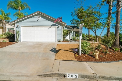 San Marcos Single Family Home For Sale: 705 Dane Dr