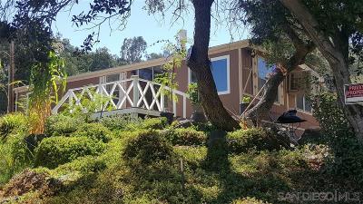 Temecula Single Family Home For Sale: 47621 Pala Road