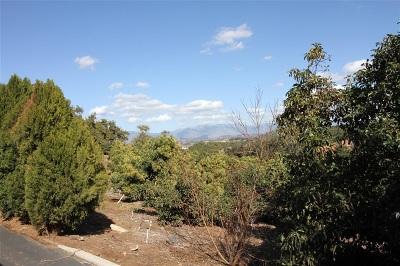 Escondido Residential Lots & Land For Sale: Camino De Las Lomas #2