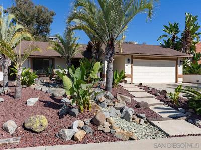 Oceanside Single Family Home For Sale: 1896 Comanche
