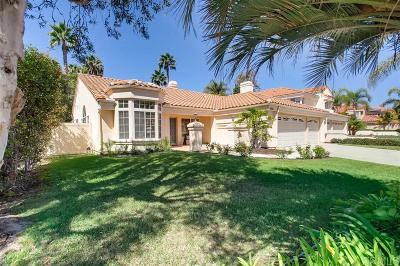 Oceanside Single Family Home For Sale: 337 Camino Parque