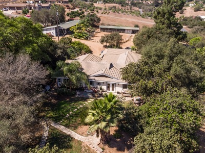 Bonsall Single Family Home For Sale: 3927 Valle Del Sol