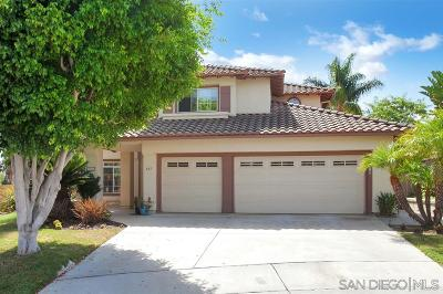 San Marcos Single Family Home For Sale: 643 Corte Loren