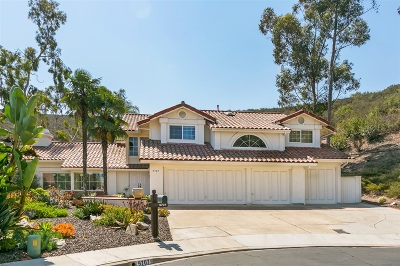 San Diego Single Family Home For Sale: 9707 Caminito Suelto