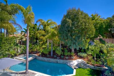 Carlsbad Single Family Home For Sale: 6658 Curlew Terrace