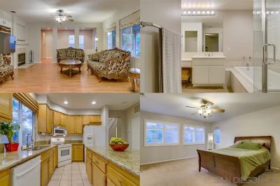 Temecula Single Family Home For Sale: 32516 Via Destello