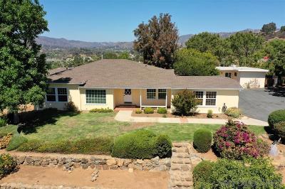 Escondido Single Family Home For Sale: 172 Leslie Lane