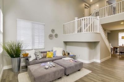 Chula Vista Single Family Home For Sale: 684 San Jacinto Pl