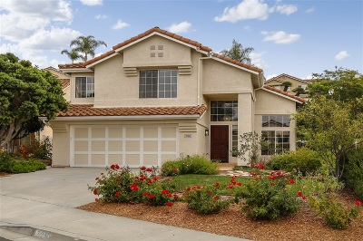 Carlsbad Single Family Home For Sale: 7010 Via Calafia