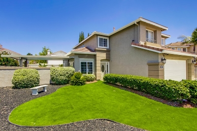 Rancho Del Rey Single Family Home For Sale: 895 Plaza Catalonia