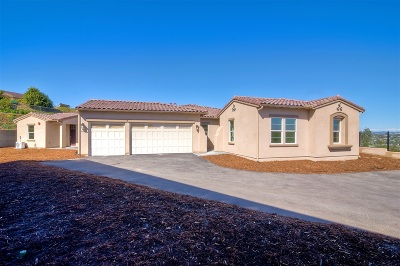 Carlsbad Single Family Home For Sale: 3108 Afton Way