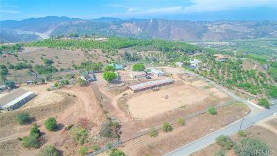 Single Family Home For Sale: 31755 Rancho Amigos Road