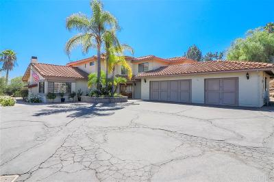 Escondido Single Family Home For Sale: 845 Leah Lane