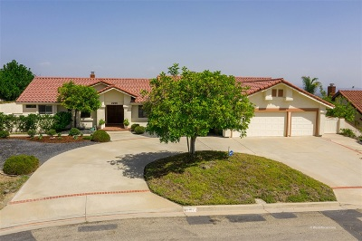 Escondido Single Family Home For Sale: 2238 Winsome Pl