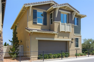 Oceanside Single Family Home For Sale: 1272 Via Candelas (50)