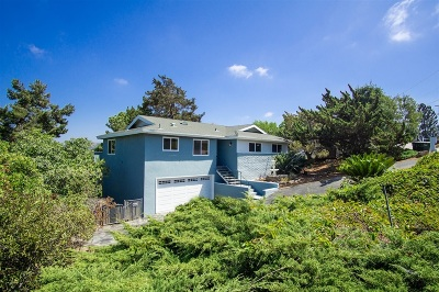 Vista Single Family Home For Sale: 1320 Phillips St