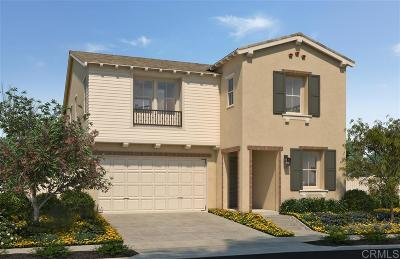 San Marcos Single Family Home For Sale: 234 Reserve Court