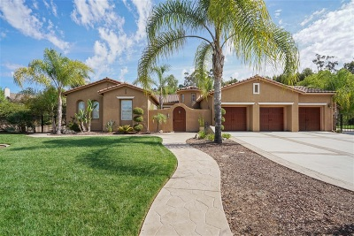 Escondido Single Family Home For Sale: 26185 Wyndemere Ct.