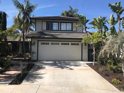 Vista Single Family Home For Sale: 1265 Longfellow Rd