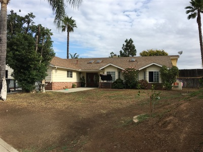 Escondido Single Family Home For Sale: 1145 Leaf Ln