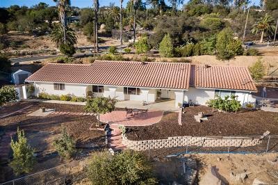 Valley Center Single Family Home For Sale: 13847 Calle De Vista