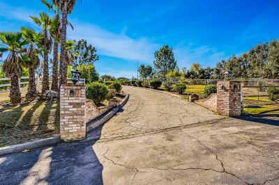 Valley Center Single Family Home For Sale: 12631 Palos Tierra Rd