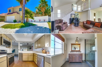 Riverside County Single Family Home For Sale: 23211 San Joaquin Ridge Dr.