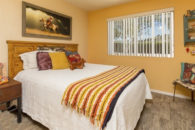Riverside County, San Diego County Single Family Home For Sale: 1738 Pamo Rd