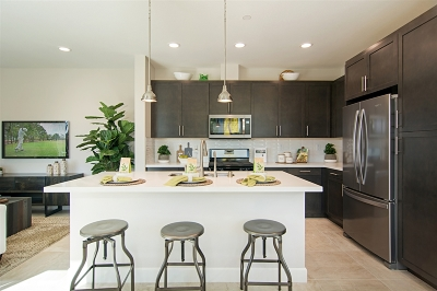 Chula Vista Single Family Home For Sale: 1775 Santa Ivy Avenue