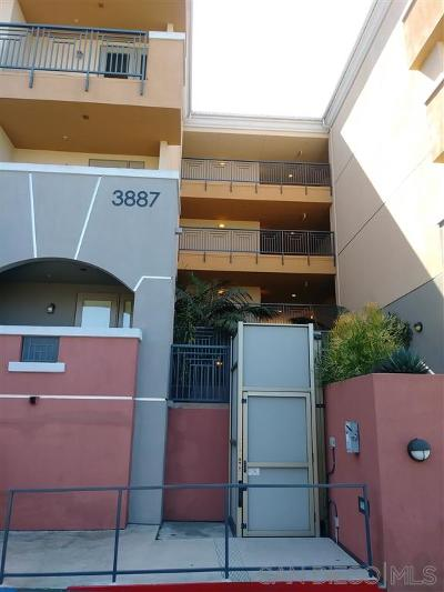Attached For Sale: 3887 Pell Pl #234